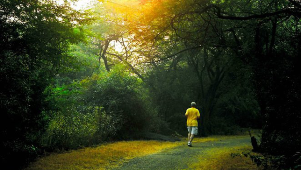 a morning walk Know the 10 benefits of morning walk, morning walk is good for weight loss, diabetes risk, stress management, sugar control, blood circulation, cholesterol, morning walk is also reduce the.